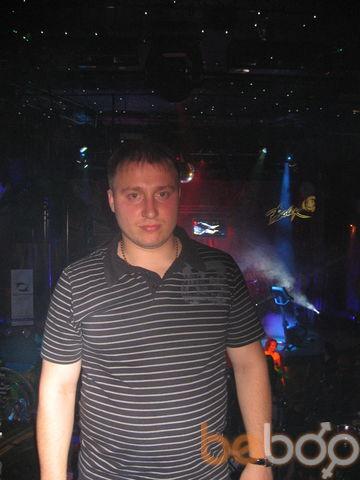 ���� ������� kotik, �������, �������, 34