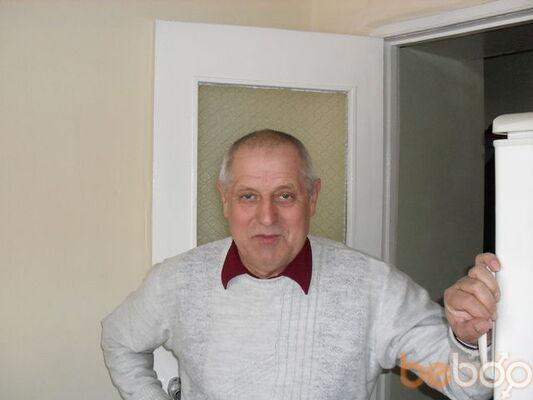 ���� ������� vikont, ���������, �������, 55