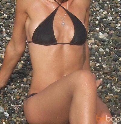 ���� ������� missy, �������, �������, 36
