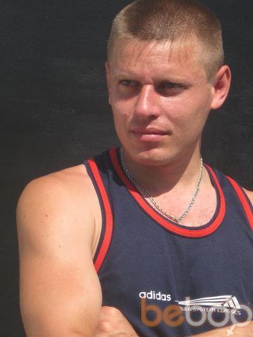 ���� ������� zeka, ���������, �������, 31