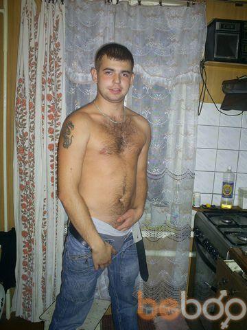 ���� ������� Tigr, �������, ��������, 29