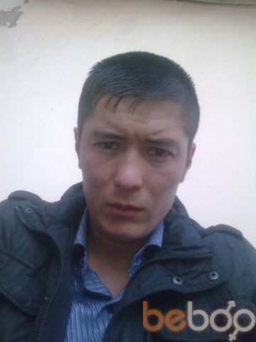 ���� ������� Nikol xix, ���������, ������, 31