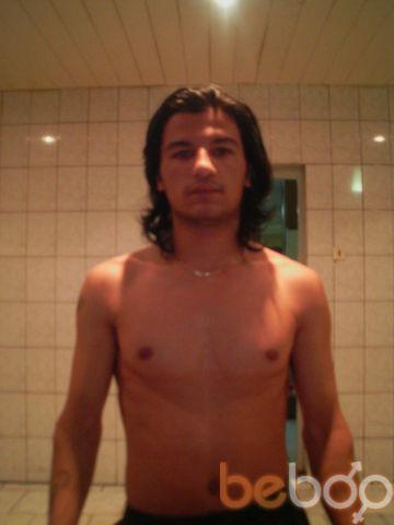 ���� ������� jalol, �������, �����������, 33
