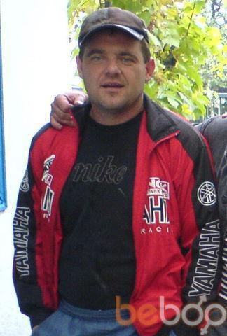 ���� ������� Almogel, ��������������, �������, 42