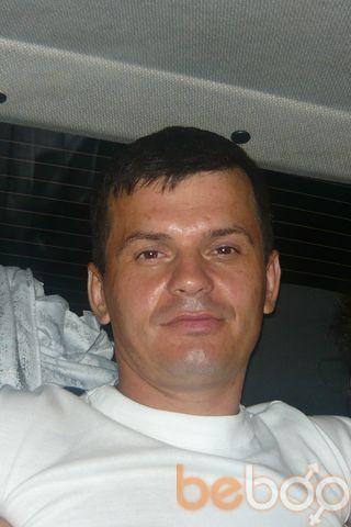 ���� ������� friscu, �������, �������, 31
